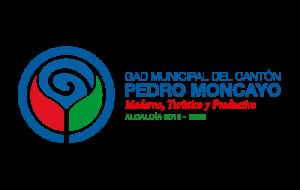 Pedro_moncayo